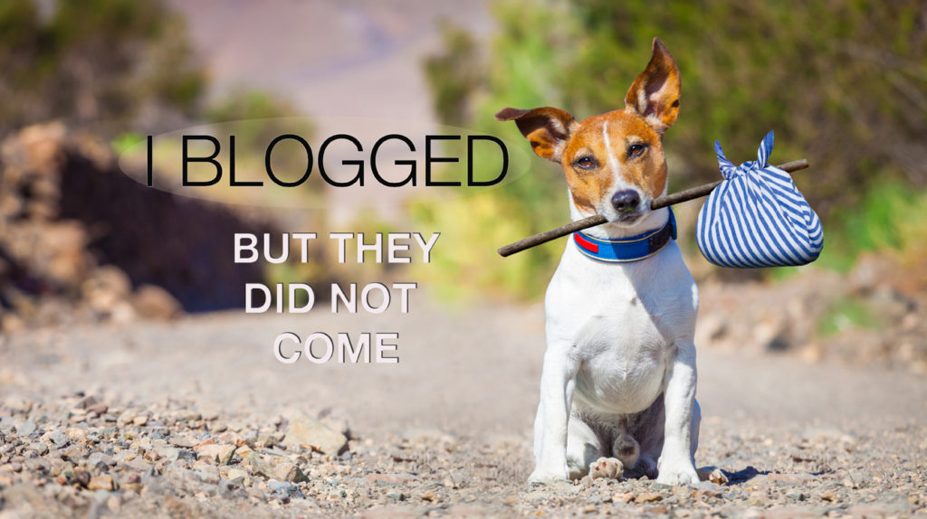 On-Page SEO: I Blogged, But They Did Not Come
